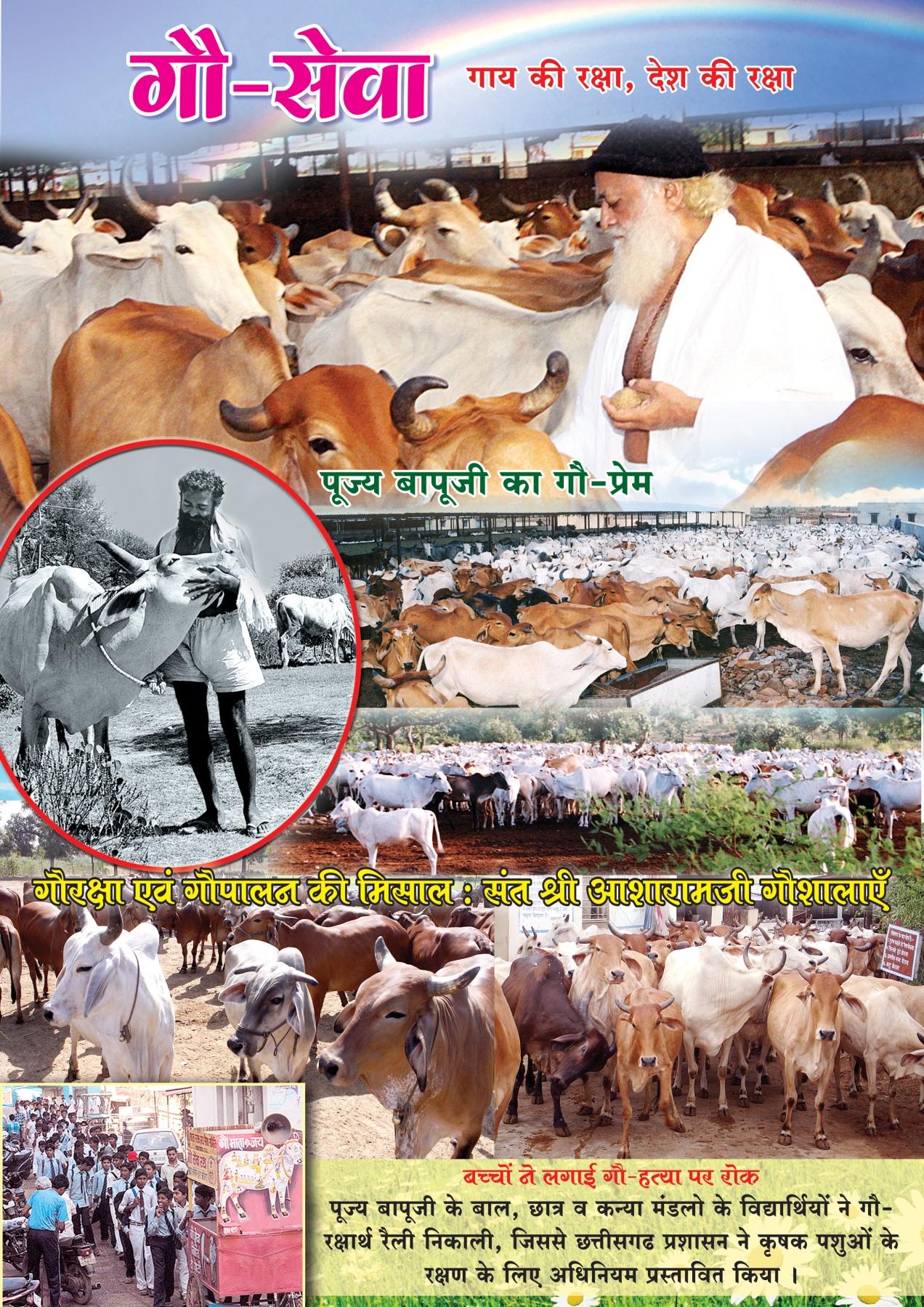 गौ सेवा - गाय की रक्षा - देश की रक्षा