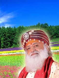 www.ashram.org