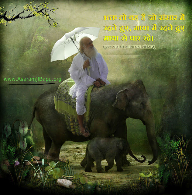 Bapuji on elephant - asaramjibapu